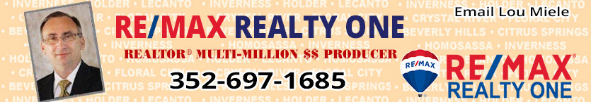 Lou Miele - Realtor & Multi-Million Dollar Producer - 352-697-1685